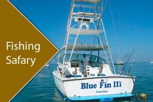 fishing-safary-blue-fin-iii